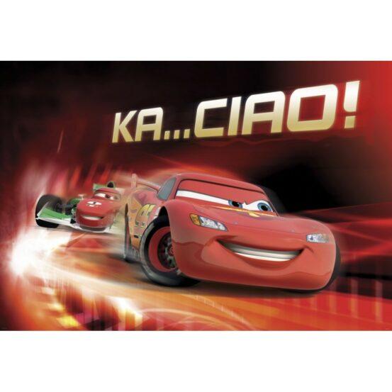 4-401 Cars Race